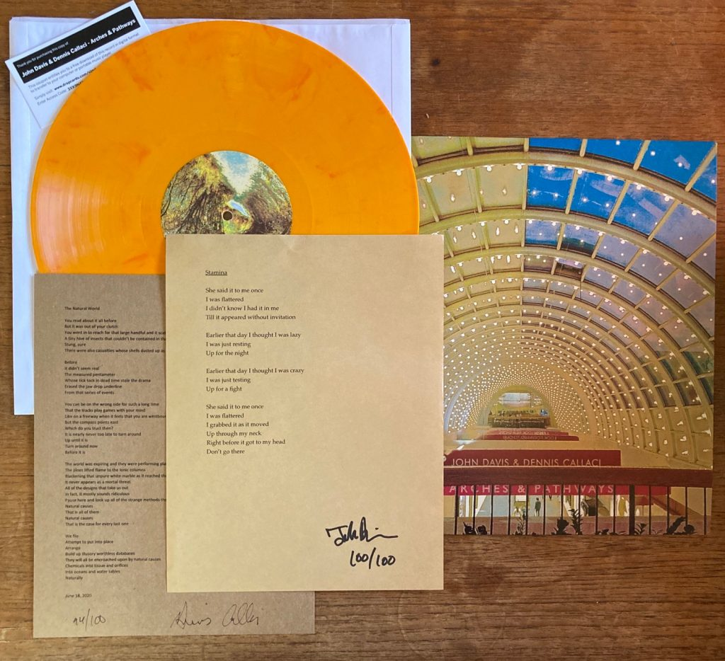 Picture of colored vinyl, poems and cover art of Arches & Pathways